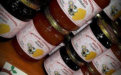 Il miele e la sua storia
